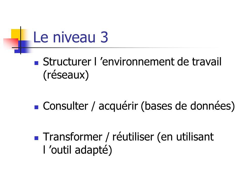 Le niveau 3 Structurer l 'environnement de travail (réseaux)