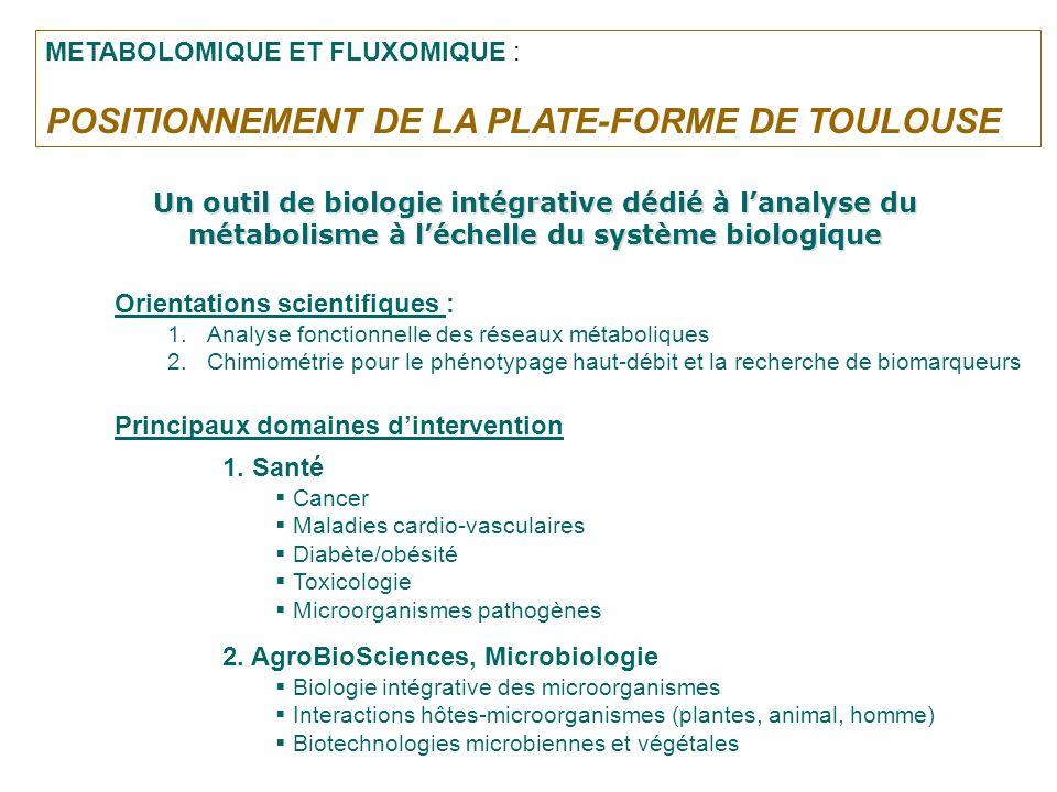 POSITIONNEMENT DE LA PLATE-FORME DE TOULOUSE