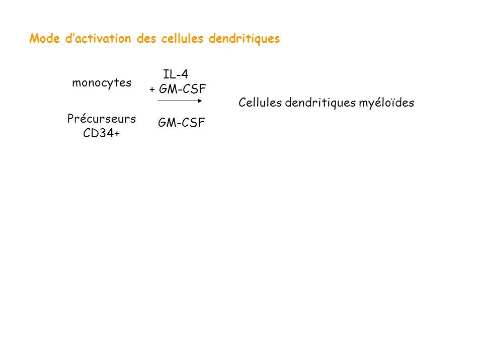 Mode d'activation des cellules dendritiques