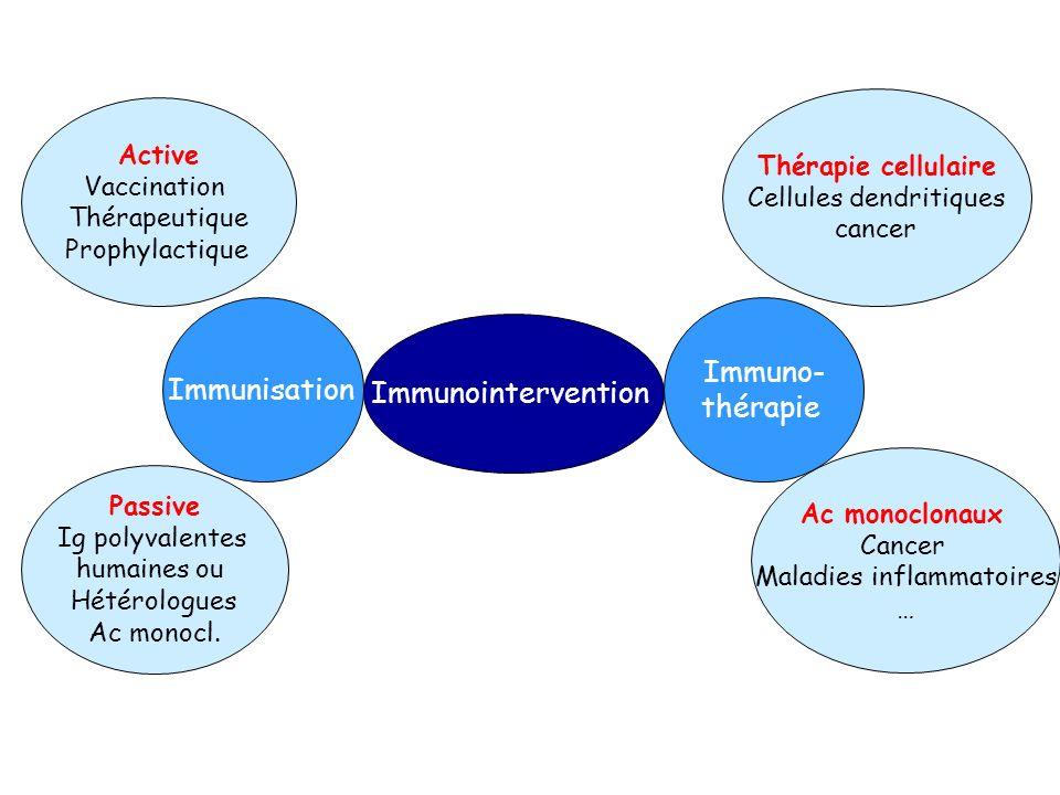 Immuno- Immunisation Immunointervention thérapie Active