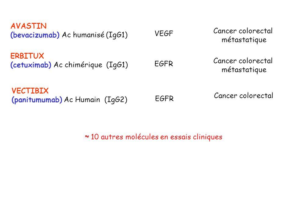 AVASTIN (bevacizumab) Ac humanisé (IgG1) Cancer colorectal. métastatique. VEGF. ERBITUX. (cetuximab) Ac chimérique (IgG1)