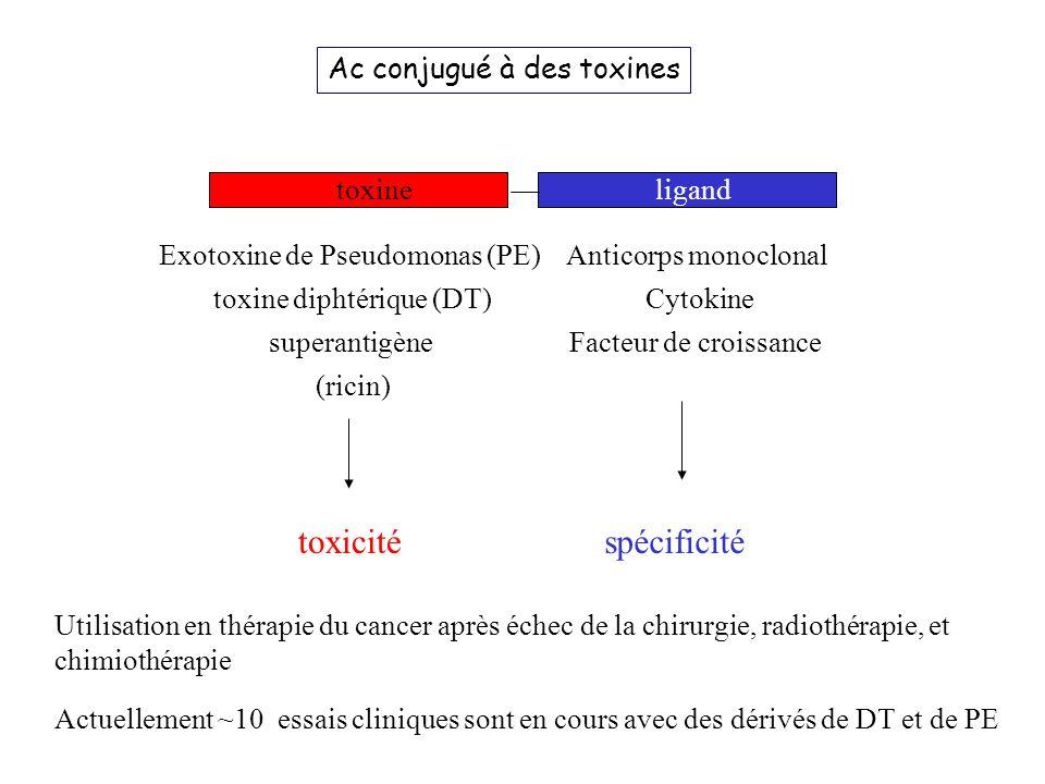 toxicité spécificité Ac conjugué à des toxines toxine ligand
