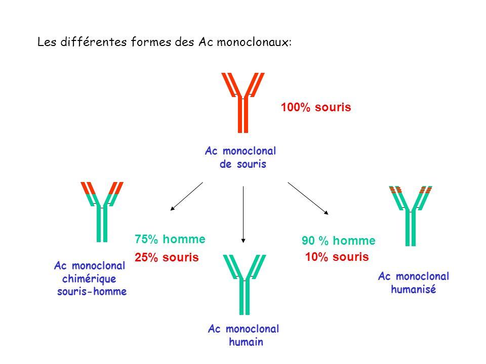 Les différentes formes des Ac monoclonaux: