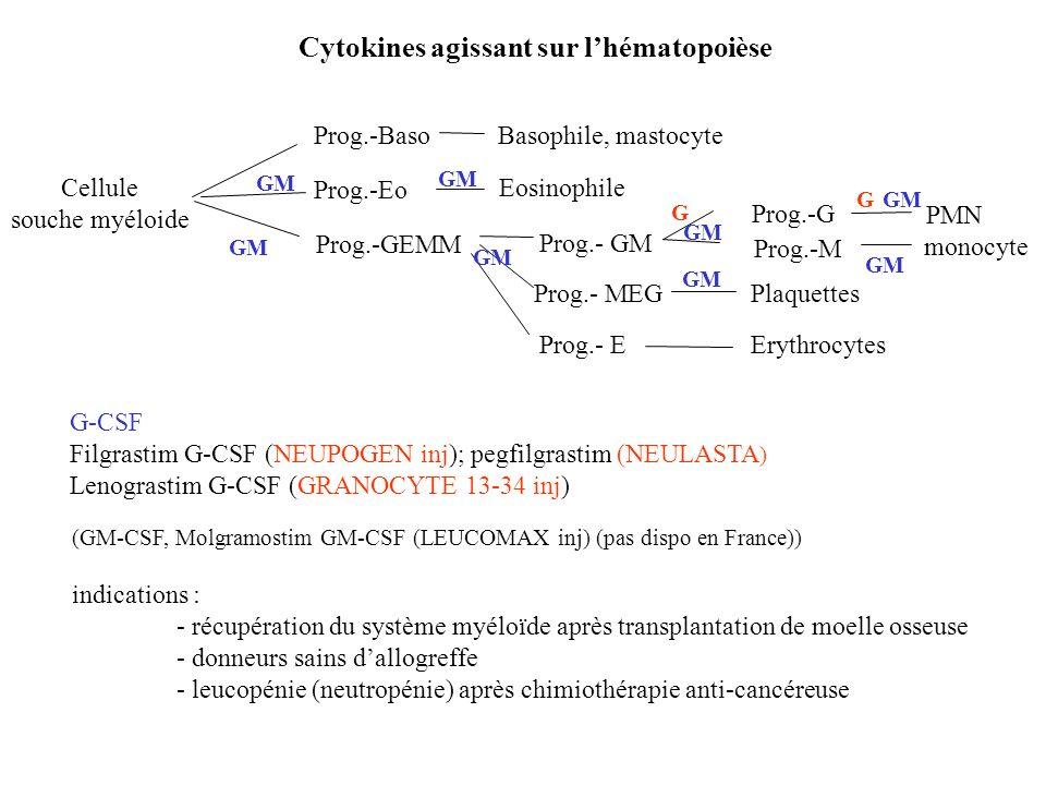 Cytokines agissant sur l'hématopoièse