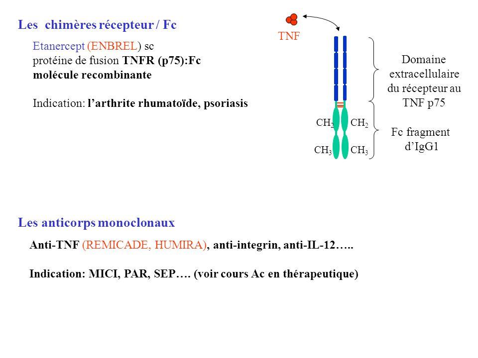 Domaine extracellulaire du récepteur au TNF p75
