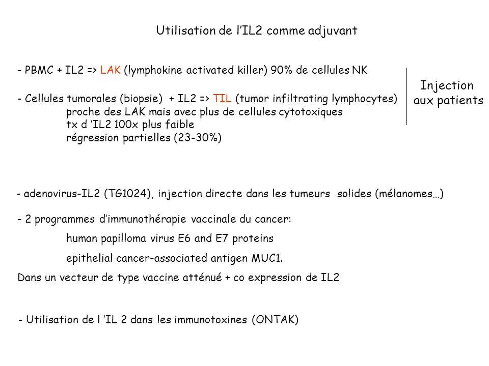 Utilisation de l'IL2 comme adjuvant