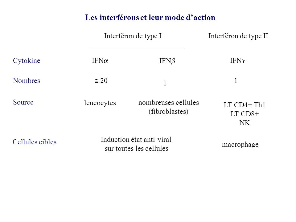 Les interférons et leur mode d'action