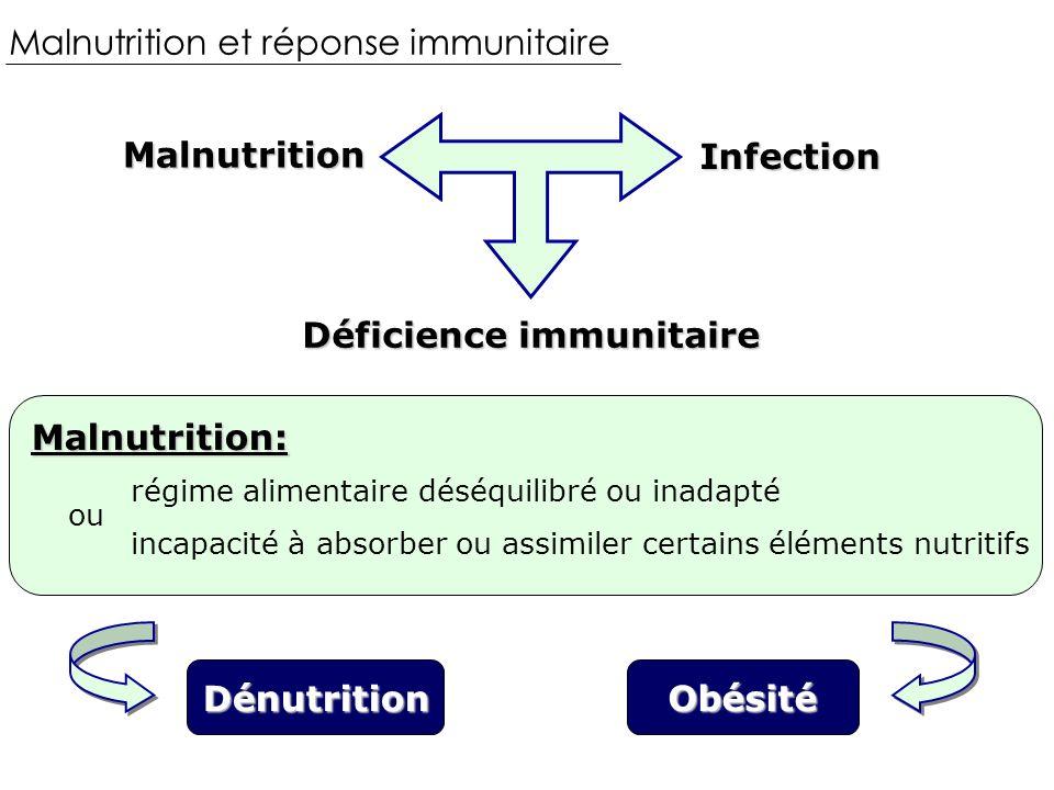 Malnutrition et réponse immunitaire