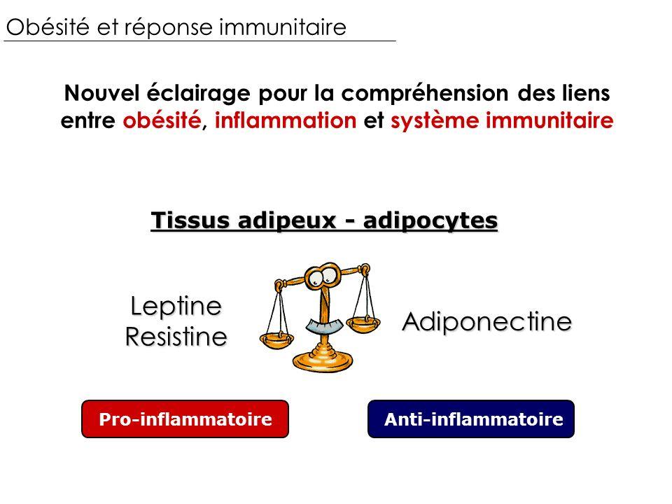 Leptine Resistine Adiponectine Obésité et réponse immunitaire