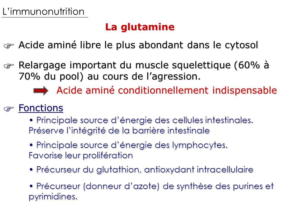    L'immunonutrition La glutamine