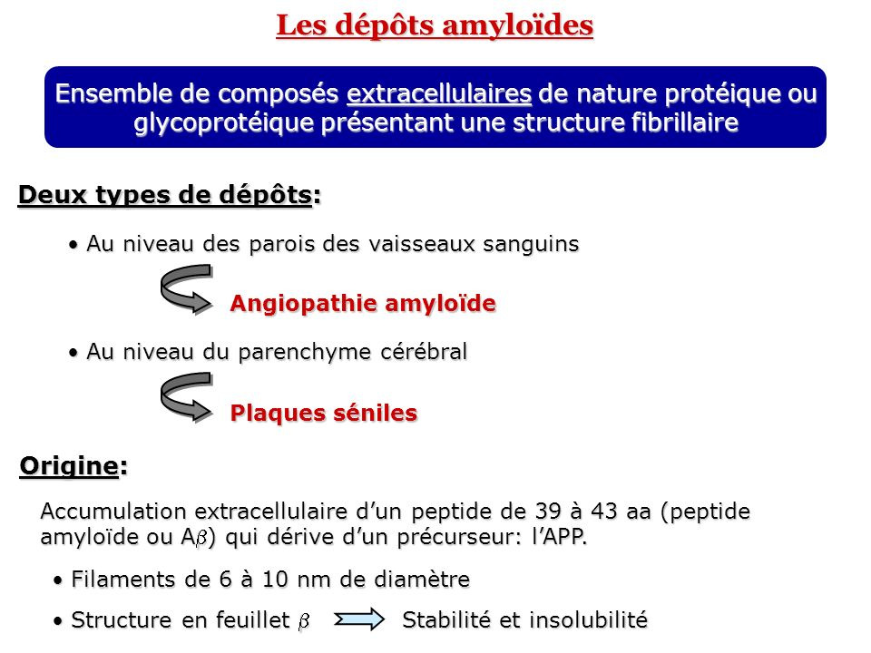 Les dépôts amyloïdesEnsemble de composés extracellulaires de nature protéique ou glycoprotéique présentant une structure fibrillaire.