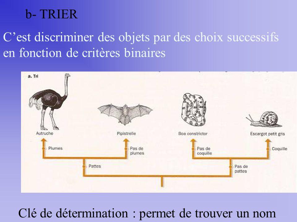 b- TRIER C'est discriminer des objets par des choix successifs en fonction de critères binaires.