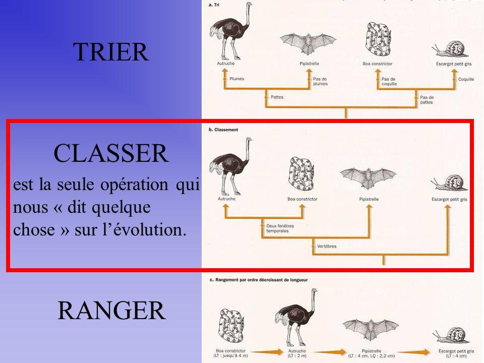 TRIER CLASSER est la seule opération qui nous « dit quelque chose » sur l'évolution. RANGER