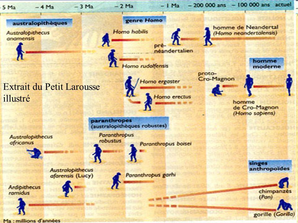 Extrait du Petit Larousse illustré