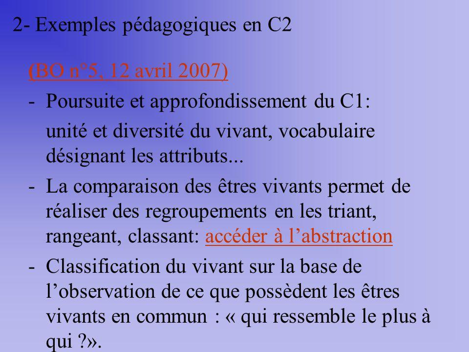 2- Exemples pédagogiques en C2