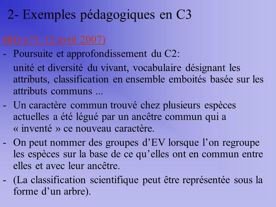 2- Exemples pédagogiques en C3