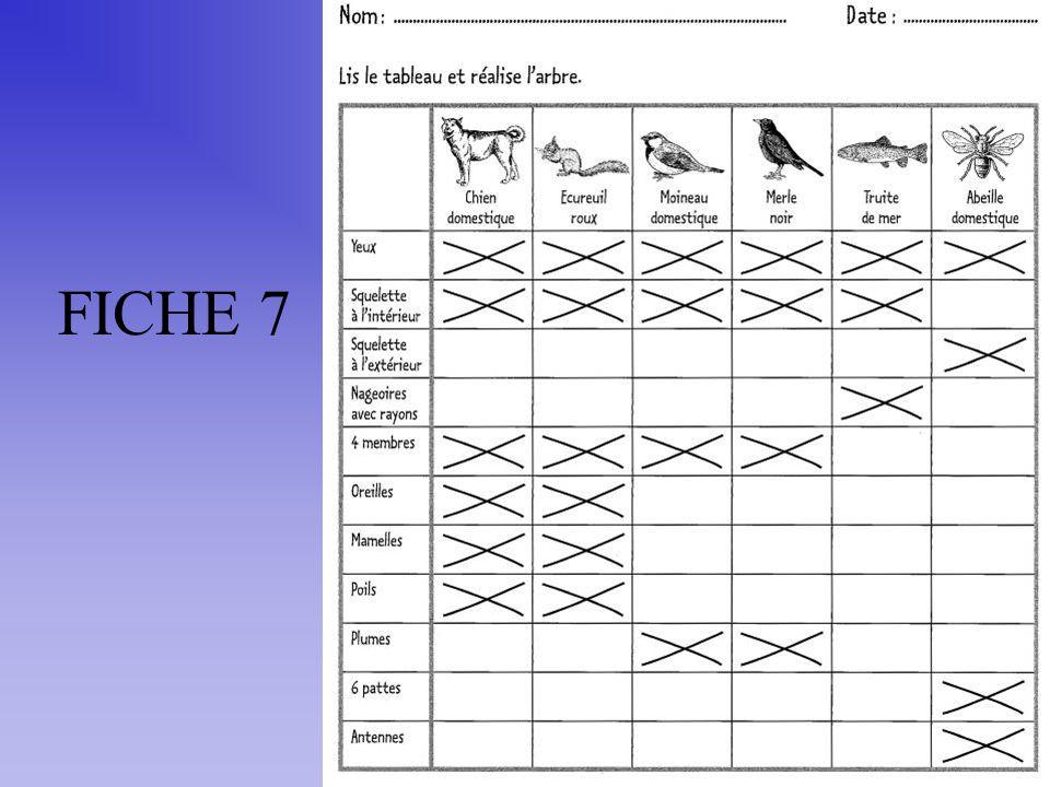 FICHE 7