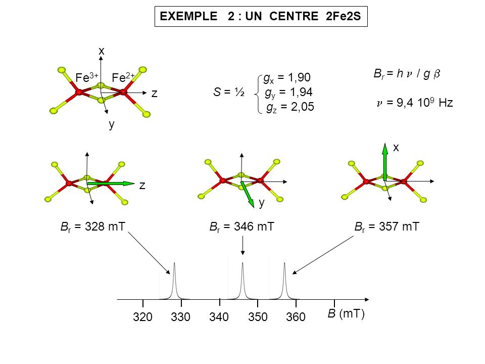EXEMPLE 2 : UN CENTRE 2Fe2S x. y. z. Fe3+ Fe2+ Br = h  / g   = 9,4 109 Hz. gx = 1,90.