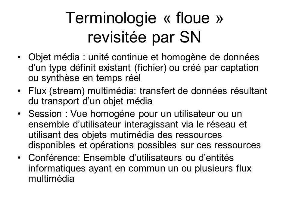 Terminologie « floue » revisitée par SN
