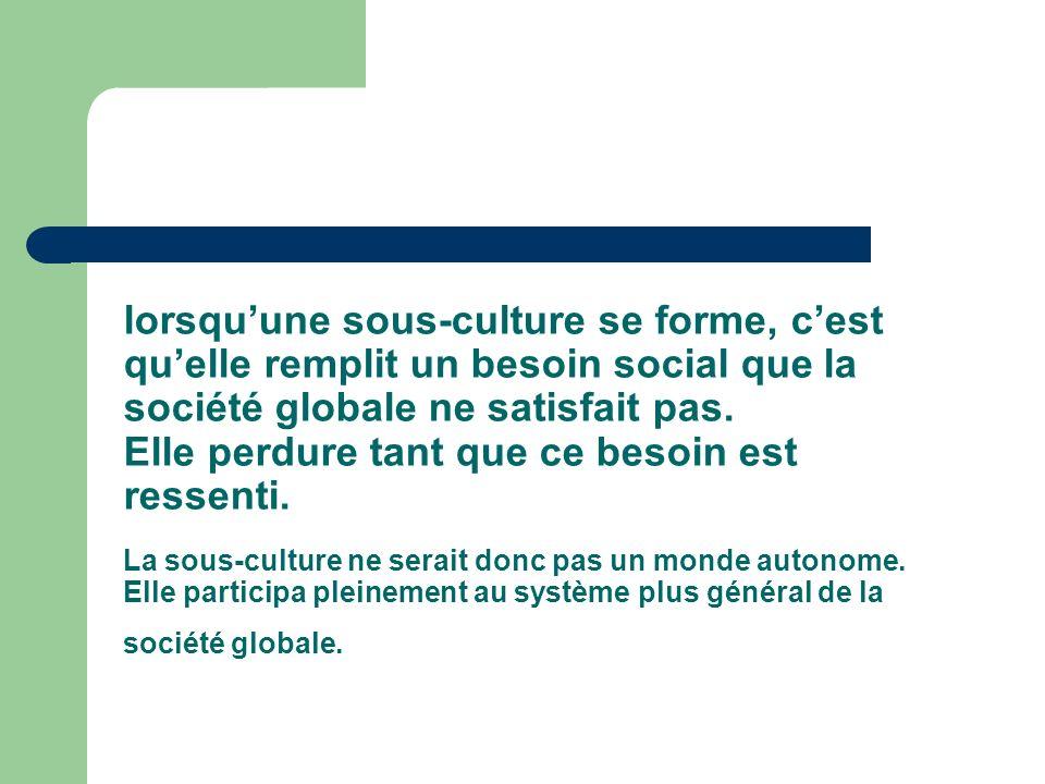 lorsqu'une sous-culture se forme, c'est qu'elle remplit un besoin social que la société globale ne satisfait pas.