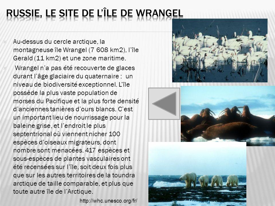 Russie, le site de l'île de Wrangel