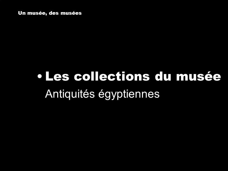 Les collections du musée