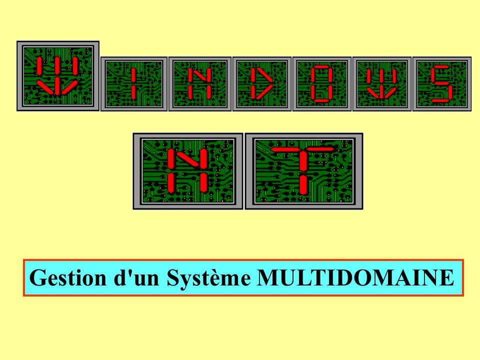 Gestion d un Système MULTIDOMAINE