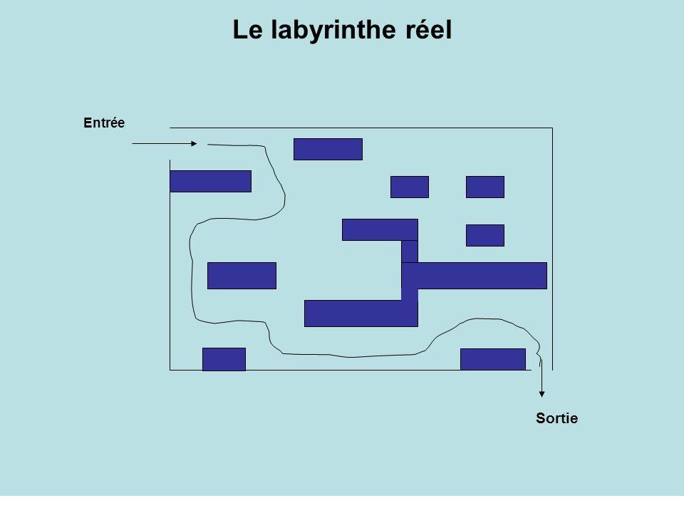 Le labyrinthe réel Entrée Sortie