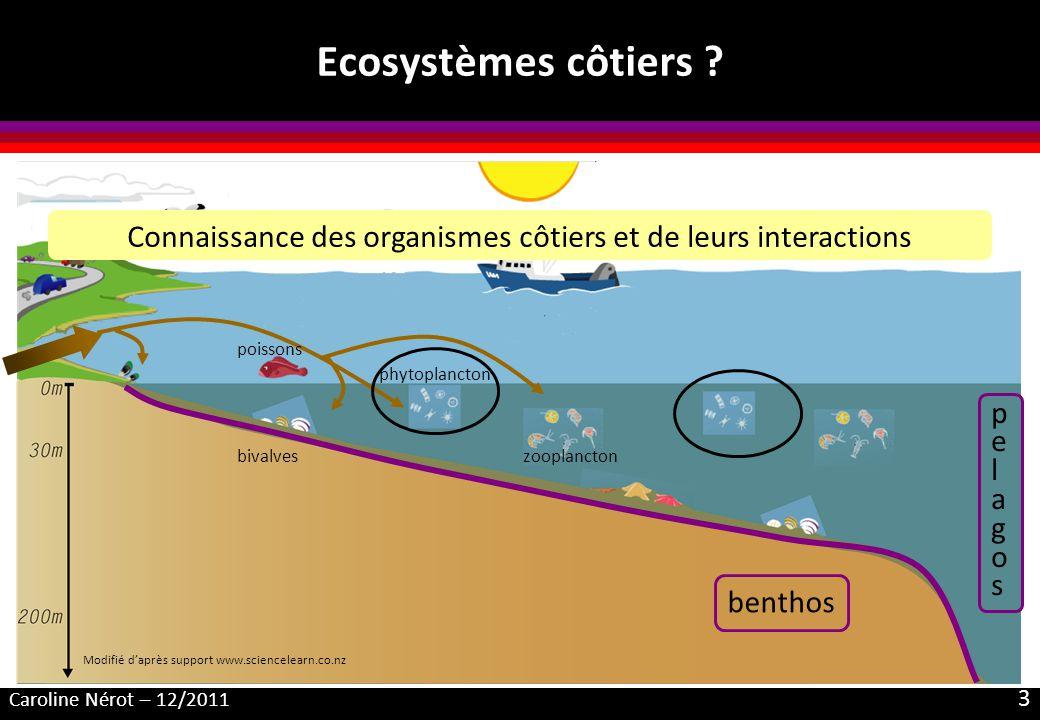 Connaissance des organismes côtiers et de leurs interactions