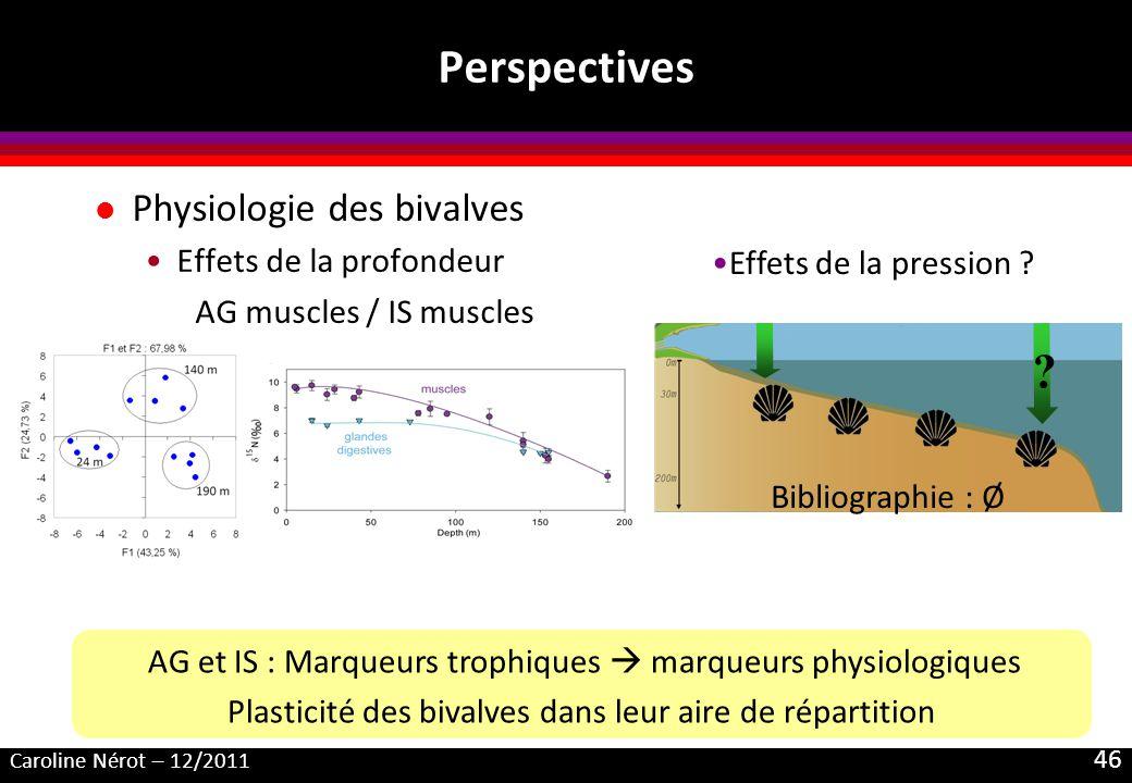 Perspectives Physiologie des bivalves Effets de la profondeur