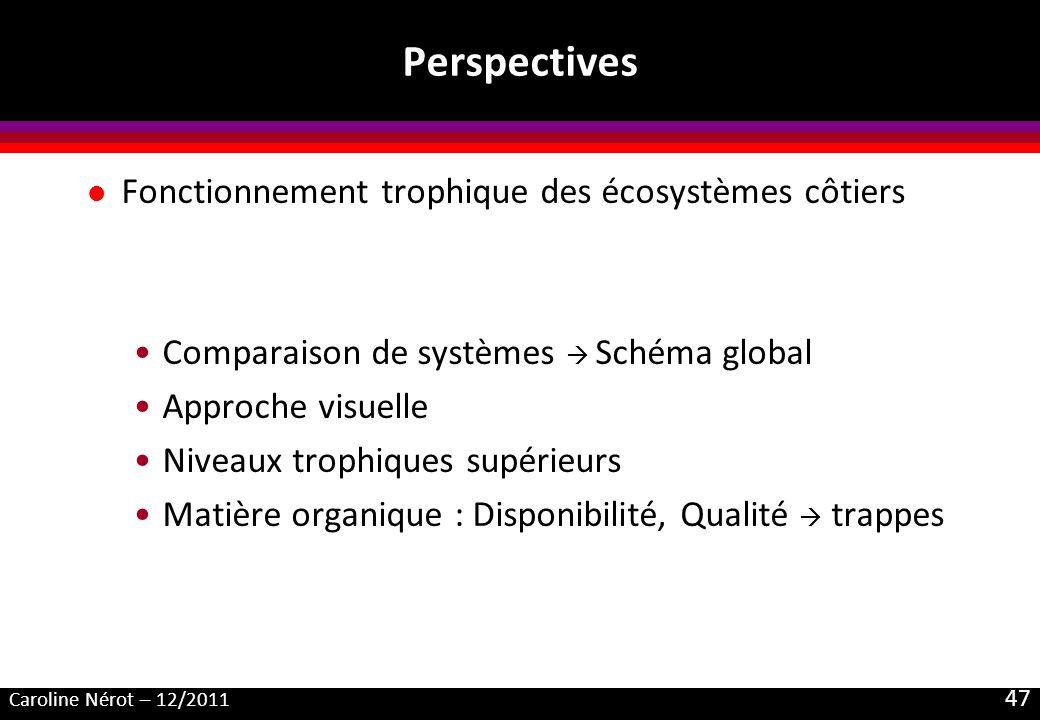 Perspectives Fonctionnement trophique des écosystèmes côtiers