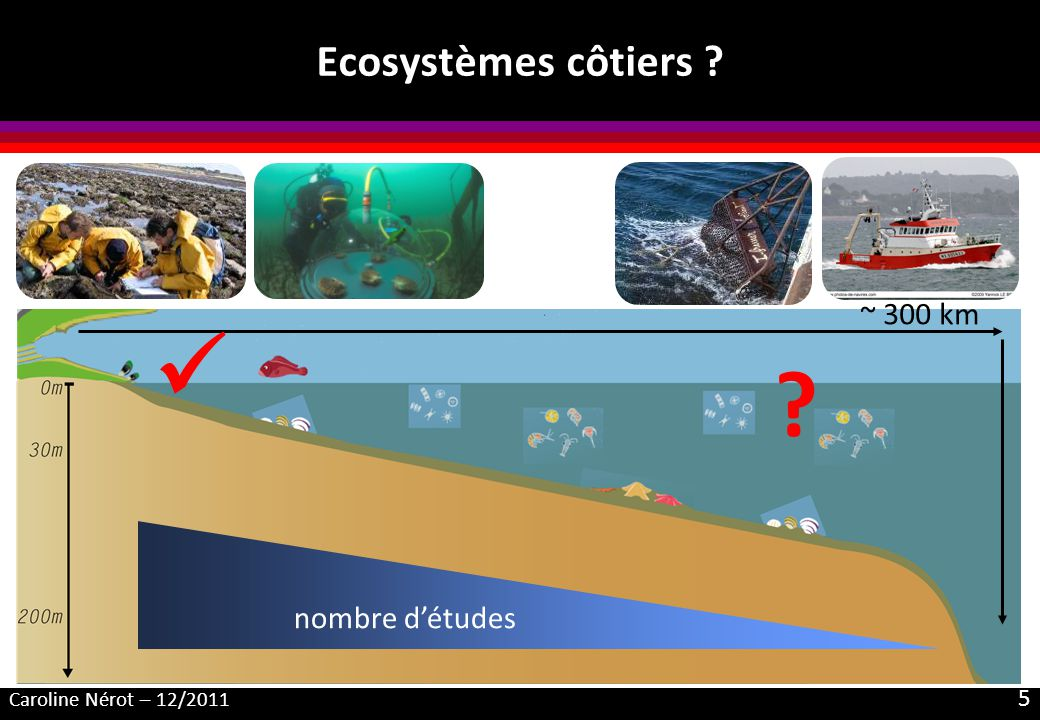  Ecosystèmes côtiers ~ 300 km nombre d'études