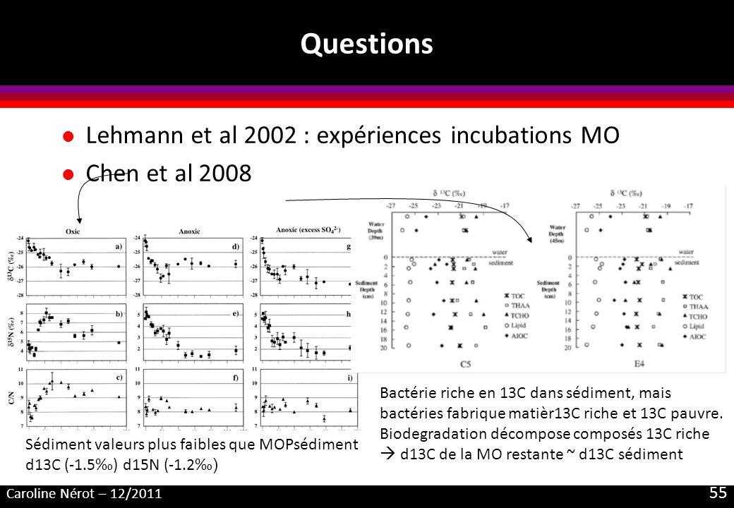Questions Lehmann et al 2002 : expériences incubations MO