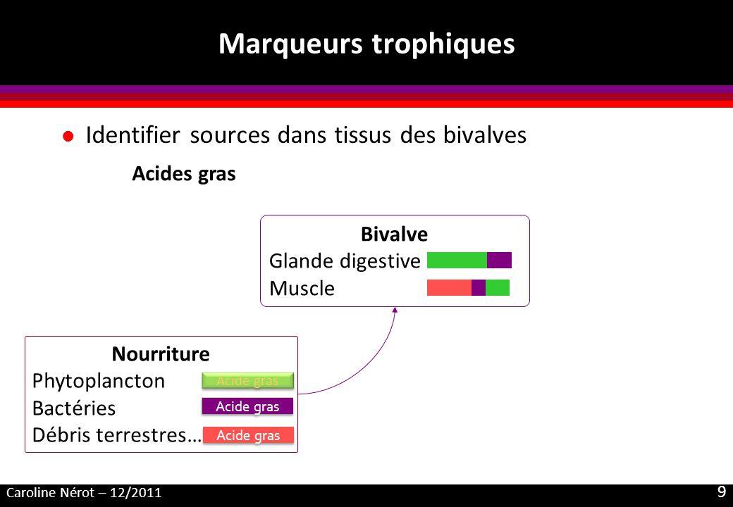 Marqueurs trophiques Identifier sources dans tissus des bivalves
