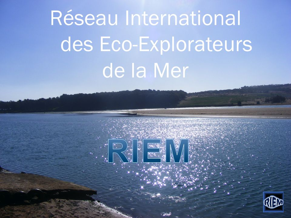 Réseau International des Eco-Explorateurs de la Mer