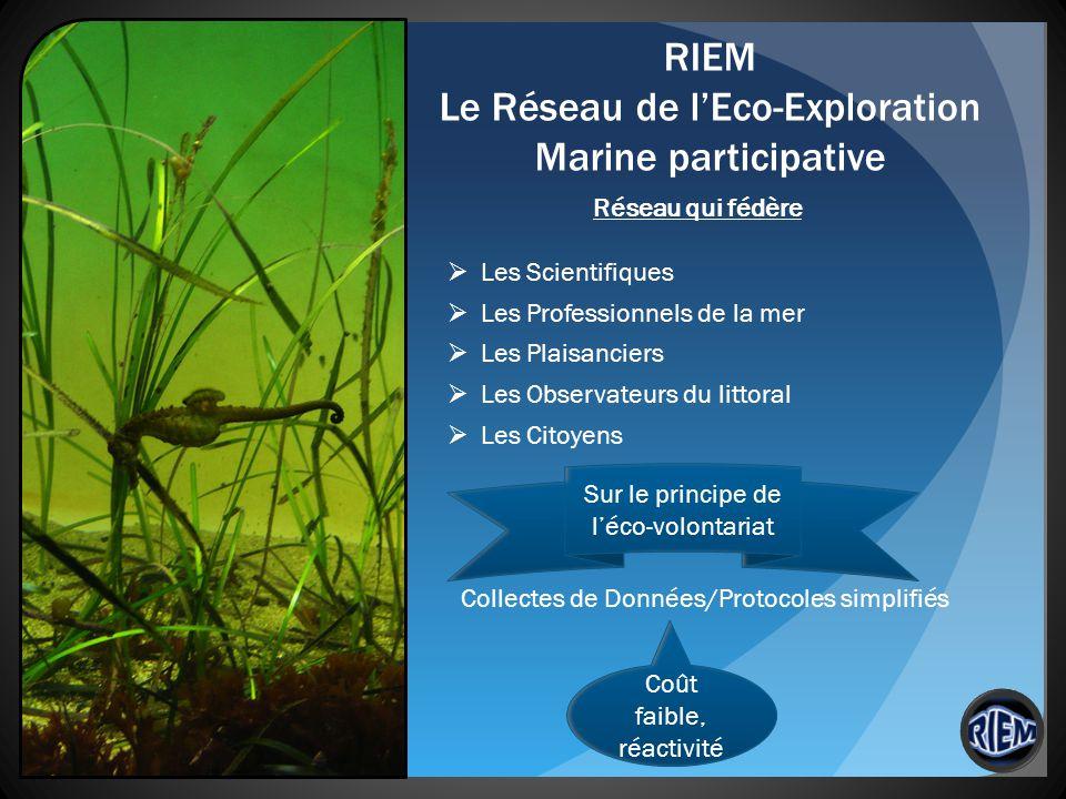 RIEM Le Réseau de l'Eco-Exploration Marine participative