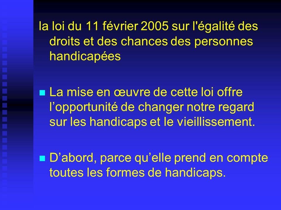 la loi du 11 février 2005 sur l égalité des droits et des chances des personnes handicapées