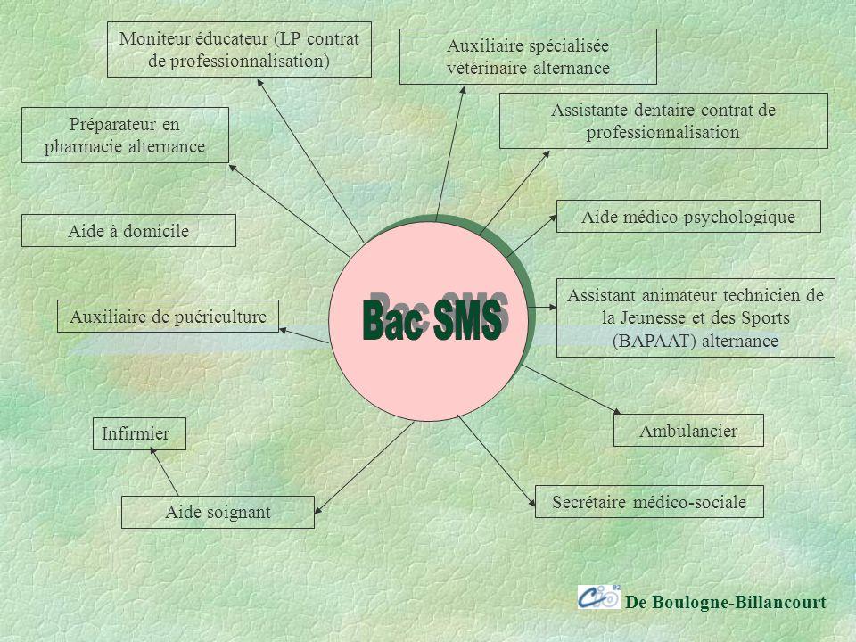 Bac SMS Moniteur éducateur (LP contrat de professionnalisation)
