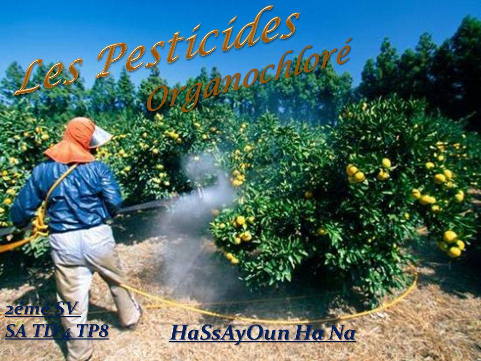 Les Pesticides Organochloré 2émé SV SA TD 4 TP8 HaSsAyOun Ha Na
