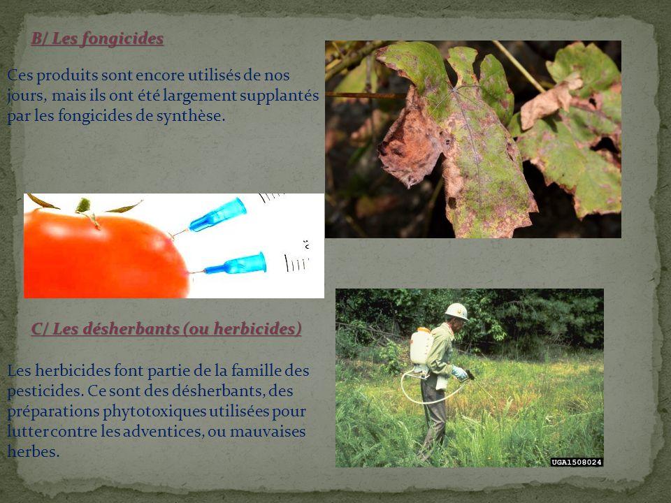 B/ Les fongicides Ces produits sont encore utilisés de nos jours, mais ils ont été largement supplantés par les fongicides de synthèse.