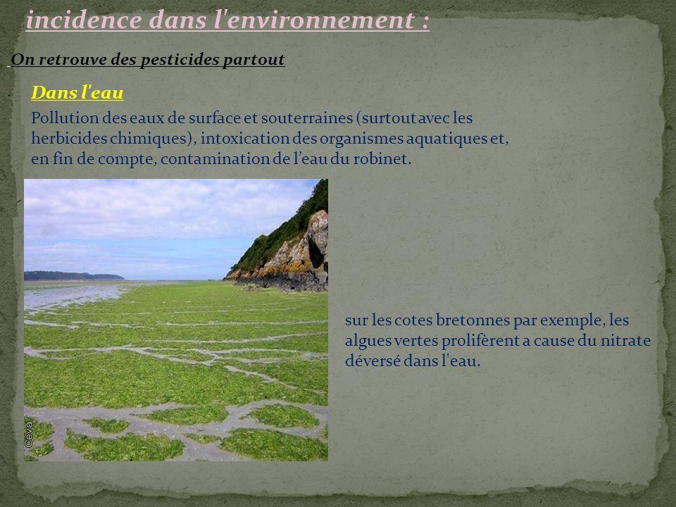 incidence dans l environnement :