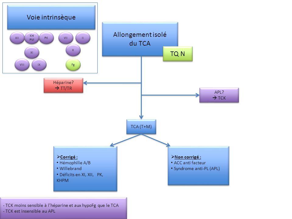 Voie intrinsèque Allongement isolé du TCA TQ N Héparine  TT/TR APL