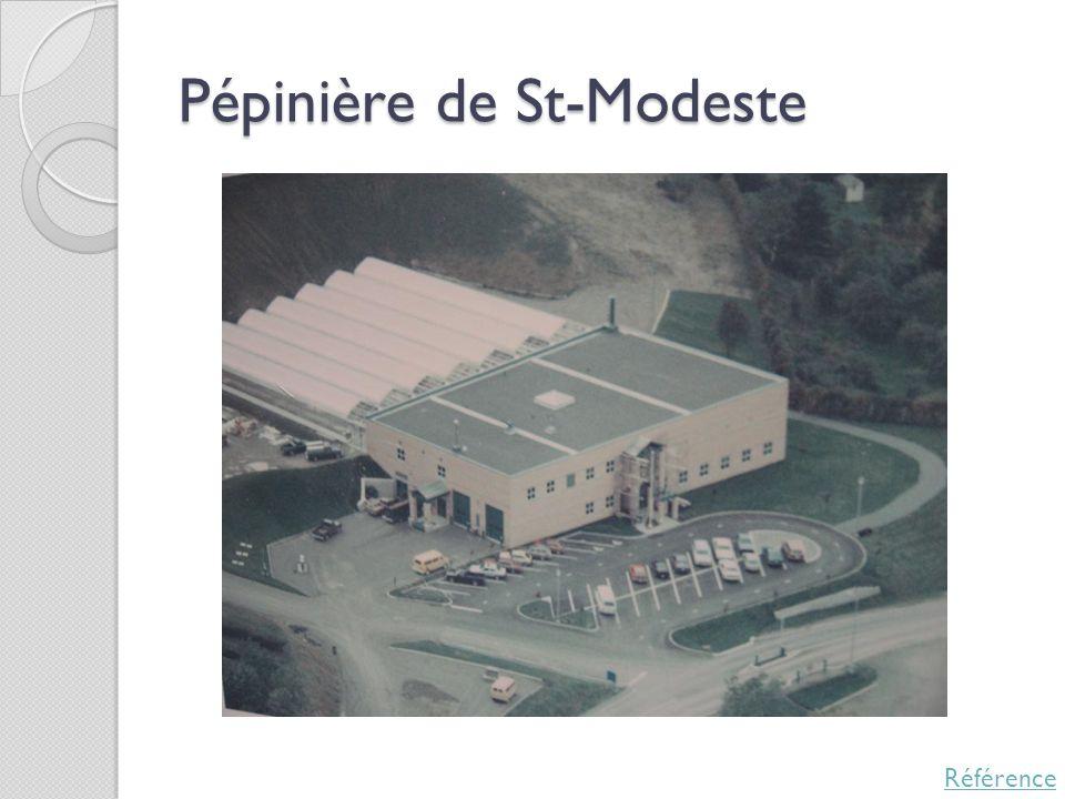 Pépinière de St-Modeste