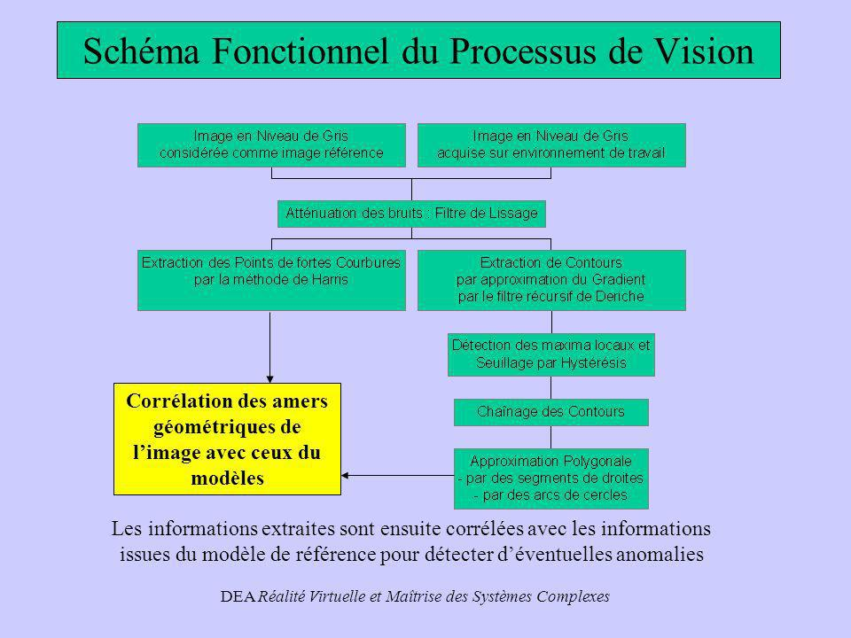 Schéma Fonctionnel du Processus de Vision