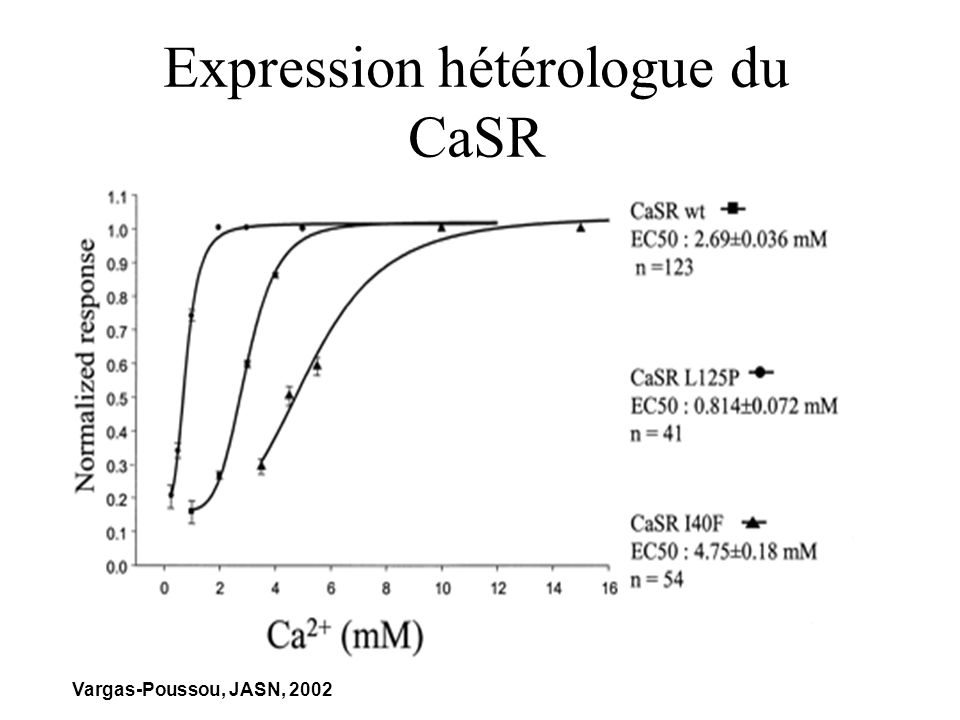 Expression hétérologue du CaSR