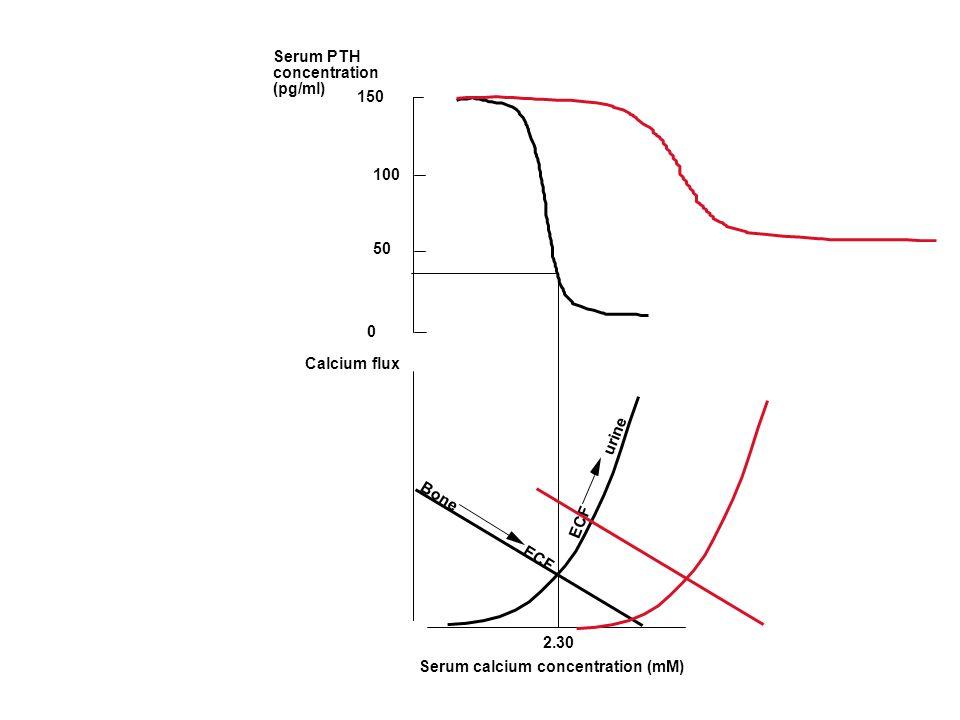 Serum PTHconcentration. (pg/ml) 150. 100. 50. Calcium flux. ECF urine. Bone ECF.