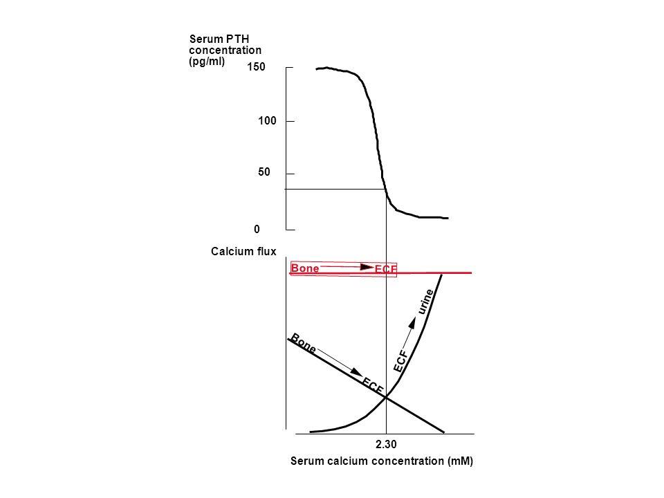 150Serum PTH. concentration. (pg/ml) 100. 50. Bone ECF. Calcium flux. ECF urine.