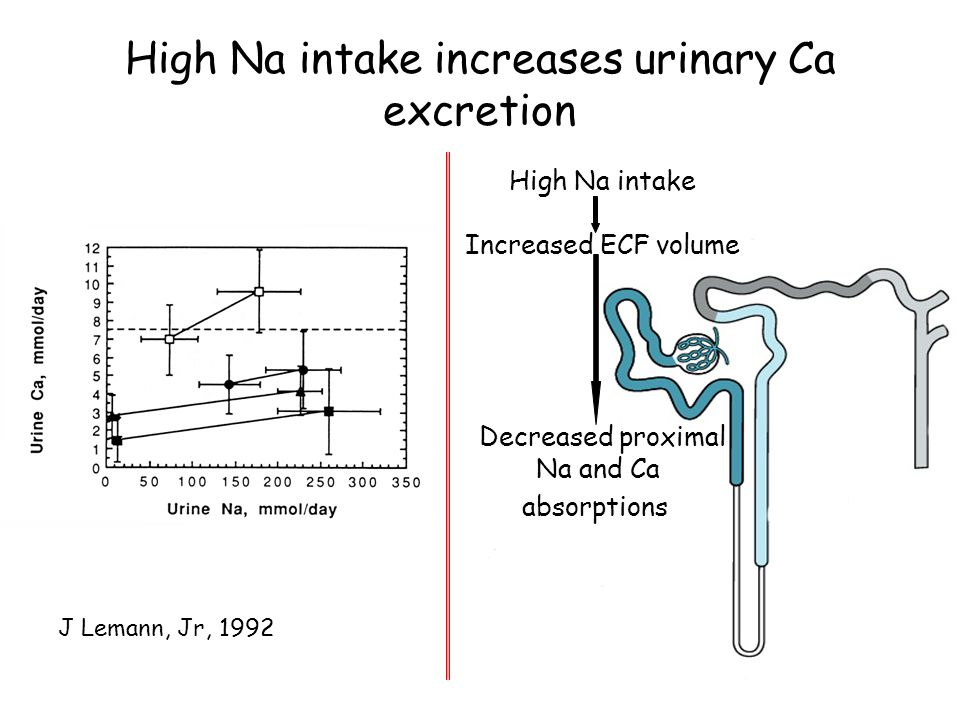 High Na intake increases urinary Ca excretion