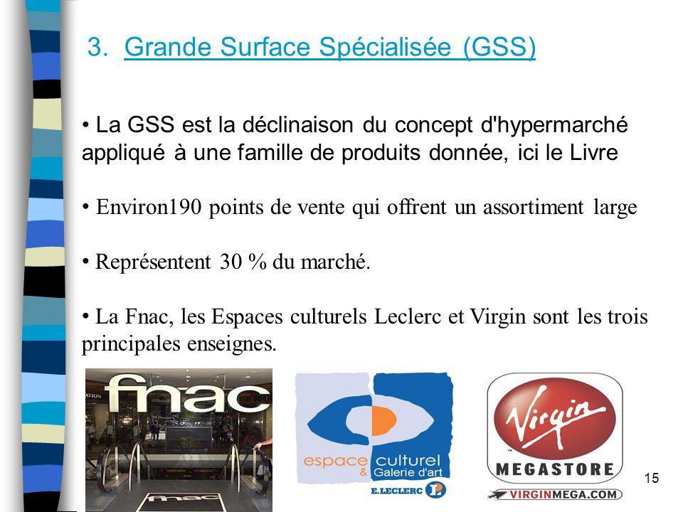 3. Grande Surface Spécialisée (GSS)