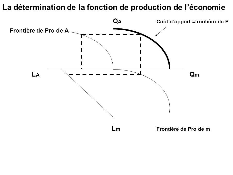 La détermination de la fonction de production de l'économie